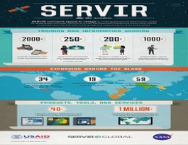 Inforgraphics and Brochure
